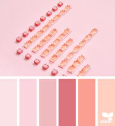 Color Candy | Design Seeds