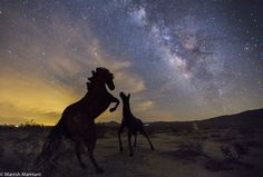 Astrophotographer Manish Mamtani sent in a photo of the Milky Way taken in Borrego Springs, California, during the weekend of Aug. 2-3, 2014. Sculptures by Ricardo Breceda stand in the foreground.