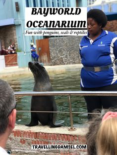 A day of petting snakes, penguins and seals in Port Elizabeth, South Africa Penguin Day, Poisonous Snakes, African Penguin, Genuine Friendship, Prehistoric Dinosaurs, Animal Skeletons, Pet Snake, Port Elizabeth, Local History