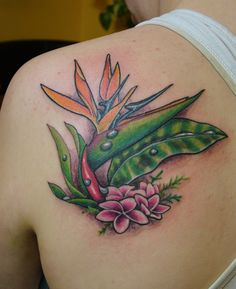 The flower is well known for resembling the Bird of Paradise in flight and is usually very dramatic and colorful. Description from leaftattoo.com. I searched for this on bing.com/images