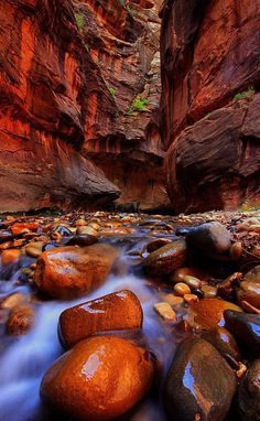 """Narrow Light. The """"Narrows"""" is the slot canyon on the Virgin River in Zion National Park, Utah. Photo by """"Waterfall Guy"""""""