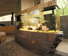 Home Aquarium Ideas: The Aquarium Buyers Guide Residential