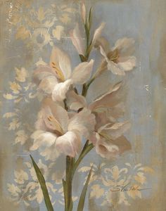 Gladiola on Soft Blue by Silvia Vassileva - Art Print Framed & Unframed at www.framedartbytilliams.com