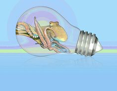 Octobulb Painting by Clarence Alford - Octobulb Fine Art Prints and Posters for Sale