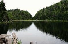 Lac Spruce, Mont Sutton, Québec, juillet 2015 Outdoors, River, Pathways, Landscape, Outdoor, Outdoor Rooms, Nature, Rivers