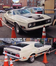 Ford Mustang Shelby Cobra, 1973 Mustang, Mustang Mach 1, My Favorite Year, Ford Mustangs, Import Cars, Pony Car, Gt500, Hot Cars