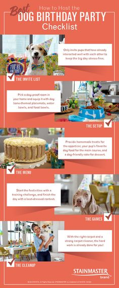 Because nobody has a dog birthday party like a terrier. Here's how to gather your favorite pooches for the paw-ty of the century. Let's hope Bella lays off the punch this time.