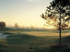 Spend Spring Break on the Course