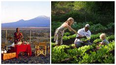 Small & welcoming, this child-friendly tented camp lies next to Kenya's Amboseli National Park & boasts epic views of Mt Kilimanjaro. Kenya Food, Kilimanjaro, Africa Travel, Eating Well, Safari, National Parks, Camping, Cook, Gourmet