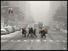 NY in the snow...   Natural Pointillism