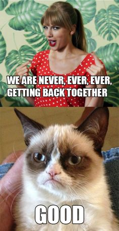 Taylor Swifts meets Grumpy Cat-this one is just for you Love Grinch, your new theme song and your favorite cat!