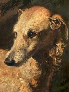Head of 'Driver', a Deerhound Owned by the 5th Duke of Gordon by Edwin Henry Landseer