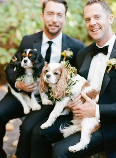 Elegantly Rustic Fall Same Sex Wedding Inspiration Rustic Fall Wedding Inspiration by Sylvia Gil Photography and Kate Siegel 37 Groom And Groomsmen Style, Groom Attire, Dog Wedding, Fall Wedding, Wedding Orange, Wedding Fun, Wedding Things, Wedding Stuff, Black Tux Rental