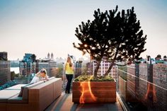 Roof Garden photo by Scott Frances/Garden Design Magazine Rooftop Terrace Design, Terrace Garden Design, Rooftop Deck, Garden Landscape Design, Landscape Architecture, Porches, Garden Design Magazine, Terrasse Design, Garden Photos