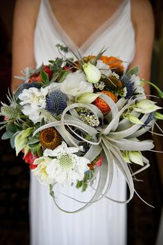 Thistle, gray airplants, Lisianthus, Echinacea bouquet!