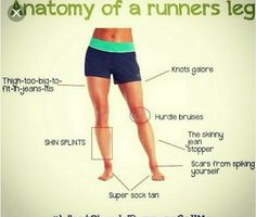 Anatomy of a runners leg