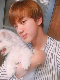 Bts Jin and Jjanggu Bts Suga, Bts Bangtan Boy, Seokjin, Taehyung, Super Mario, Worldwide Handsome, Namjin, Bts Pictures, Photos
