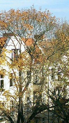 Alt-Tegel (Schulstraße)