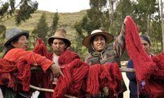 Nilda Callañaupa from CTTC raises a crimson red skein of yarn after a successful dye day in Acopia, Peru. ||ClothRoads