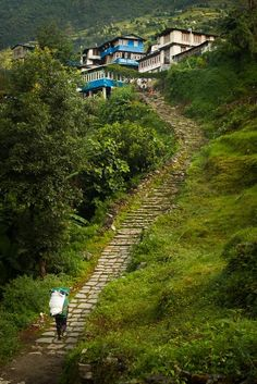 Porter bringing goods to a village - Annapurna Sanctuary Trek, Nepal - Pixdaus