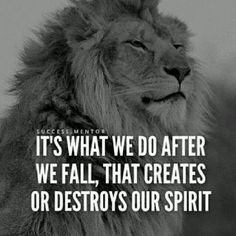 Best 30 Lion Motivational Quotes - Home Inspiration Inspirational Quotes With Images, Great Quotes, Motivational Quotes, Quotes Images, Word Up, Wisdom Quotes, Me Quotes, Grunge Quotes, Quotes Women