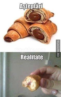 Croissant, Study, Humor, Memes, Funny, Studio, Humour, Meme, Crescent Roll
