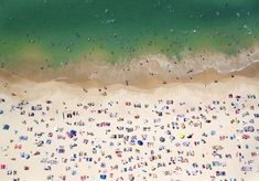 Coogee Beach from the air by Gray Malin