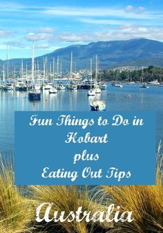 Fun things to do in Hobart plus bonus Eating Out Tips | Budget Travel Talk
