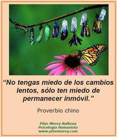 """""""No tengas miedo de los cambios lentos, sólo ten miedo de permanecer inmóvil."""" Proverbio chino"""