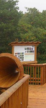 Baumwipfelweg Althodis - barrierefreies Naturerlebnis Park, Road Trip Destinations, Nature, Parks