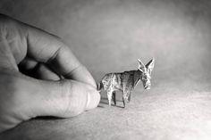 origami Gonzalo Calvo 09