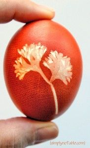 I must make time to do this with the kids! Natural egg dying!