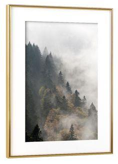 Nebelwald by Michael Valjak   Poster   artboxONE