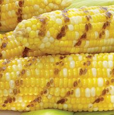 If you've already got dinner going on the grill, you might as well pop on a few ears of corn. Have them with dinner or use them in salads or salsas.