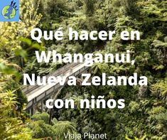 ¿Buscáis cosas que hacer en Whanganui Nueva Zelanda con niños mientras estáis ahí? Si es así tenemos esa información aquí. Whanganui ofrece muchos lugares para visitar y actividades para niños de todas las edades. New Zealand, Things To Do, Places To Visit, Activities
