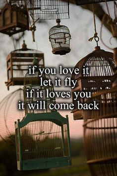 If you Love it  Let it Fly If it Loves you It will come back