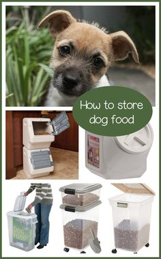 Many people wonder how to store dog food. The main thing is to keep it somewhere safe from outside elements as well as various vermin and pests.