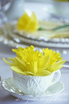 Beautiful White Pottery With Daffodils