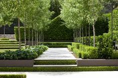 Image result for manchurian pears in formal gardens