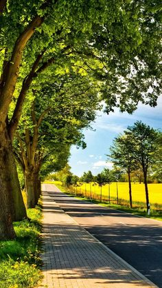 🇩🇪 Sunny country road (northern Germany) by Bettina Lichtenberg cr. Studio Background Images, Dslr Background Images, Photo Background Images, Picsart Background, Photo Backgrounds, Hd Background Download, Digital Backgrounds, Wallpaper Free Download, Beautiful Nature Wallpaper