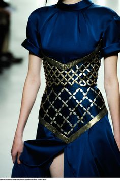 Rodarte Royal blue dress with golden armor accents MUST USE