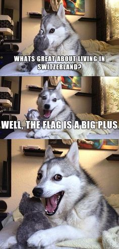 What's great about living in Switzerland?/Well, the flag is a big plus #punny