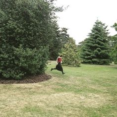 #KewGardens #Forest