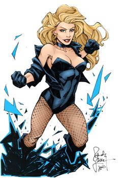 Black Canary by Randy Green, color by Sorathepanda Dc Comics Art, Comics Girls, Fun Comics, Black Canary Comic, Arrow Black Canary, Dinah Drake, Dc Batgirl, Dinah Laurel Lance, Hq Dc