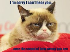 Stories of times I was wrong. An imaginary day if Grumpy Cat were your teacher. Stories of times when I felt people weren't listening to my side. I Was Wrong, My Side, Your Teacher, Grumpy Cat, Writing, Math, Fun, Animals, Times