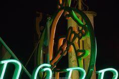 Neon Zoo, Rotterdam Blijdorp