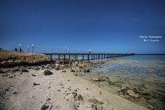 New Jetty Marsa Alam, Exotic Fish, Red Sea, Sandy Beaches, Holiday Destinations, Adventure, History, City, Water