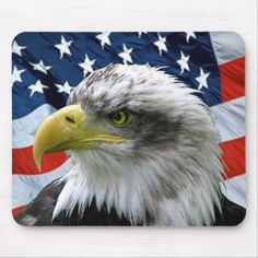Close up photo of Bald Eagle in front of American Flag adorns this Patriotic Sticker. Great for Independence Day, Flag Day Veterans Day, or any day you want to show your Patriotism. Size: inch (sheet of Gender: unisex. American Flag Bandana, American Flag Eagle, American Pride, Patriotic Pictures, Eagle Pictures, You Draw, Veterans Day, Custom Posters, Celebrities