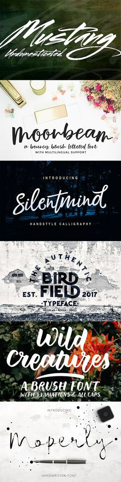 An assortment of our favorite new fonts, patterns, and photography made by creators around the world.