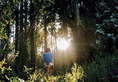 """Basta uma pequena caminhada em meio à natureza para se ter certeza do bem estar que ela nos traz, ao ponto que muitas vezes temos a impressão de que andar entre árvores, plantas e animais pode melhorar até mesmo nossa saúde. Pois estudos comprovam que não se trata de mera impressão: o contato com a natureza de fato faz bem à saúde. Não é por acaso que no Japão foi desenvolvido o shinrin-yoku, um """"banho de floresta"""" que pode nos trazer benefícios físicos e mentais. Desenvolvido no início dos…"""